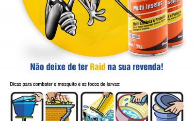 Disdal – Email Marketing – Raid