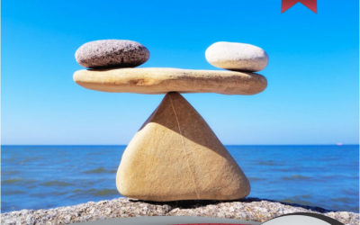 Giro e Rentabilidade em perfeito equilíbrio | Perkus