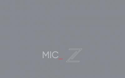 MIC – LIZER
