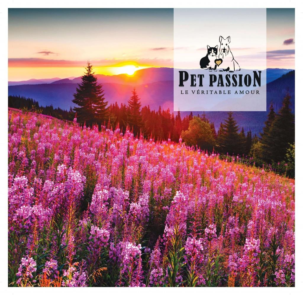 PetPassion - Vidro